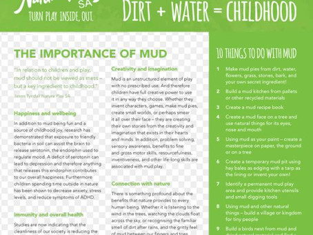 The Importance of Mud!