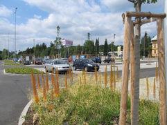 zahradni-a-parkova-tesco-ml-06.jpg