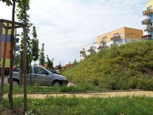 zahradni-a-parkova-stara-role-05.jpg