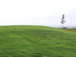 zahradni-a-parkova-golf-silvestr-13.jpg