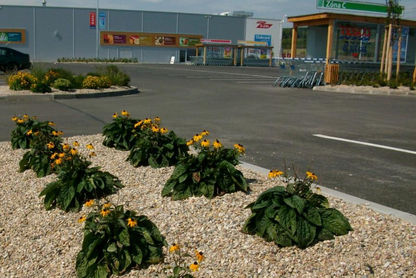 zahradni-a-parkova-tesco-mlada-boleslav-