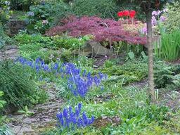 zahradni-a-parkova-vila-cernosice-08.jpg