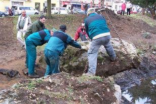 zahradni-a-parkova-labuti-jezirko-06.jpg