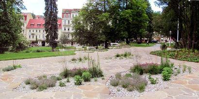 zahradni-a-parkova-okoli-americkeho-pama