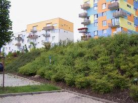 zahradni-a-parkova-stara-role-08.jpg