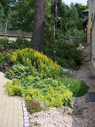 zahradni-a-parkova-san-remo-16.jpg
