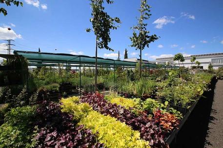 zahradni-parkova-prodejna-22-nahled.jpg