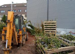 zahradni-a-parkova-kaufland-leonberg-02.