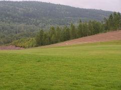 zahradni-a-parkova-golf-silvestr-16.jpg