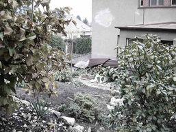 zahradni-a-parkova-vila-cernosice-02.jpg