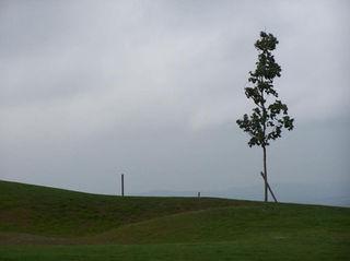 zahradni-a-parkova-golf-silvestr-14.jpg
