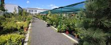 zahradni-parkova-prodejna-31-nahled.jpg