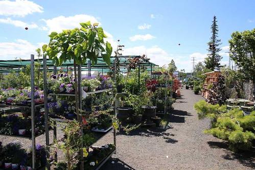zahradni-parkova-prodejna-08-nahled.jpg
