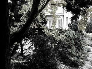 zahradni-a-parkova-vila-cernosice-03.jpg