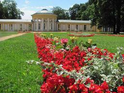 zahradni-a-parkova-letnickove-zahony-ml2
