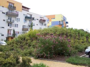 zahradni-a-parkova-stara-role-07.jpg