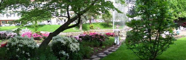 zahradni-a-parkova-labuti-jezirko-09.jpg