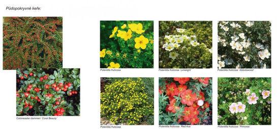venkovska-zahrada-brtna-06.jpg