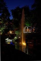 zahradni-a-parkova-labuti-jezirko-12.jpg