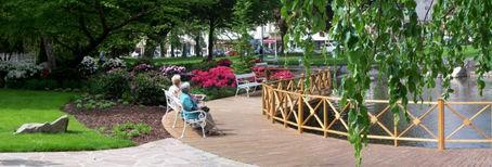 zahradni-a-parkova-labuti-jezirko-10.jpg