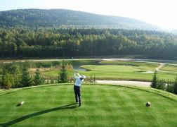 zahradni-a-parkova-golf-sylvestr-01.jpg