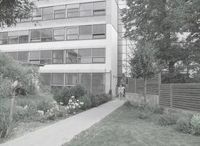 sadove-upravy-kacerov-05.jpg