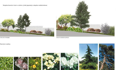 navrh-dosadeb-soukroma-zahrada-praha-8.j