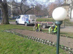 zahradni-a-parkova-udrzba-zelene-plzen-0