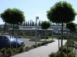 zahradni-a-parkova-sadove-upravy-plzen-0