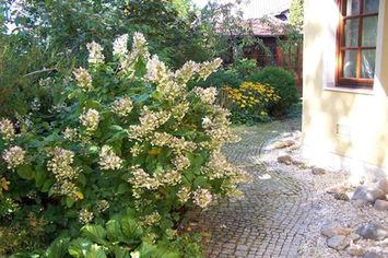 zahradni-a-parkova-mala-zahradka-05.jpg