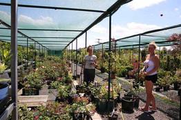 zahradni-parkova-prodejna-16-nahled.jpg