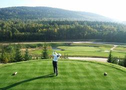 zahradni-a-parkova-golf-silvestr-01.jpg