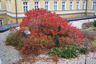 zahradni-a-parkova-zahrada-na-strese-05.
