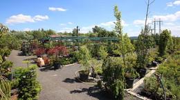 zahradni-parkova-prodejna-28-nahled.jpg
