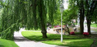 zahradni-a-parkova-labuti-jezirko-08.jpg