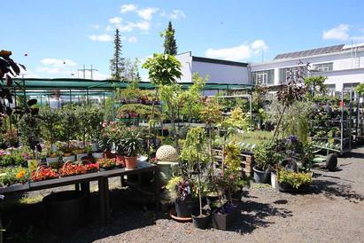 zahradni-parkova-prodejna-09-nahled.jpg