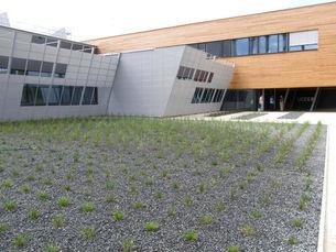 zahradni-a-parkova-uceeb-bustehrad-07.jp
