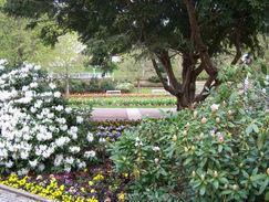 zahradni-a-parkova-jaro-marianske-lazne3