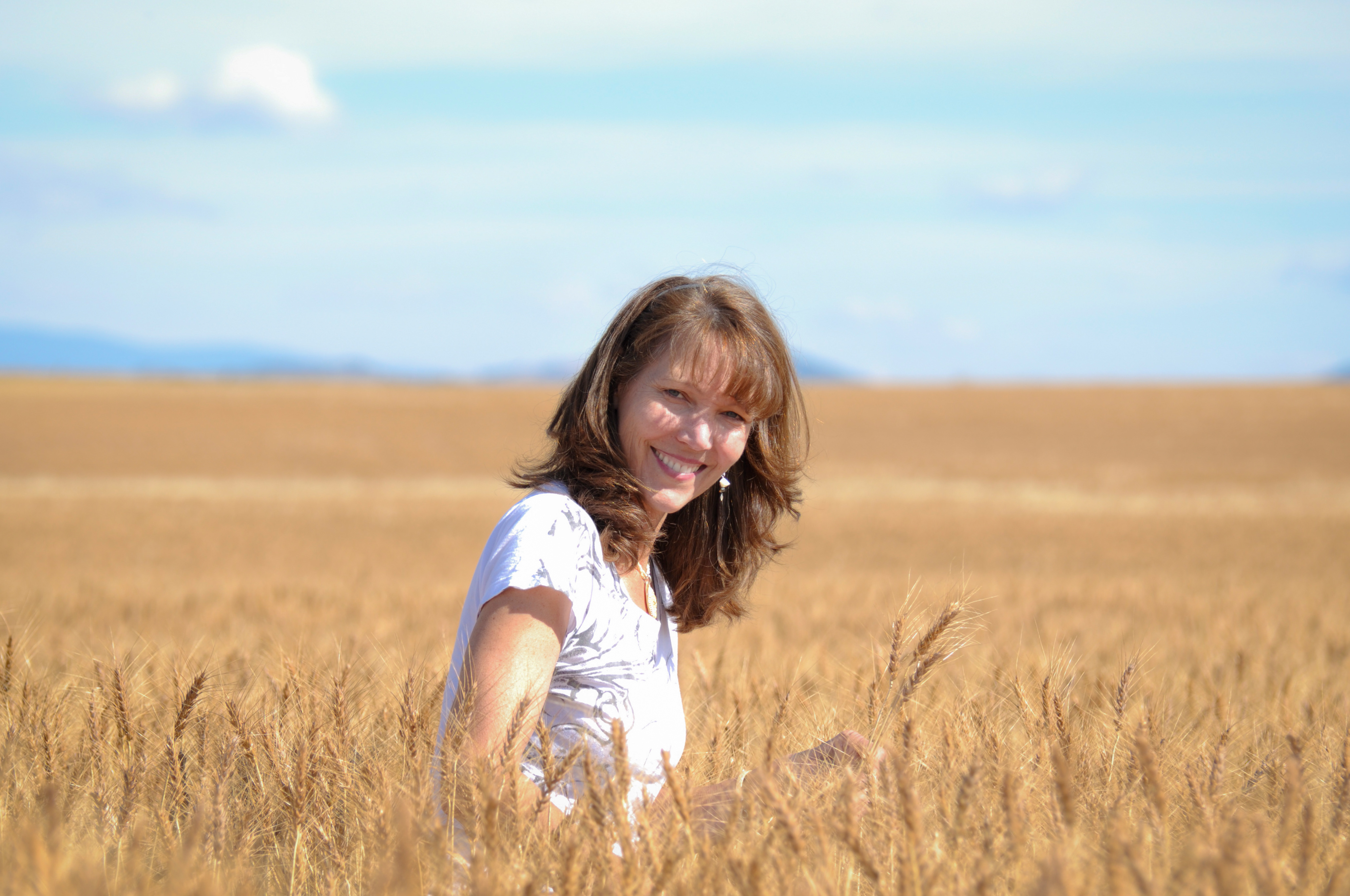 Wheat Fields in Montana