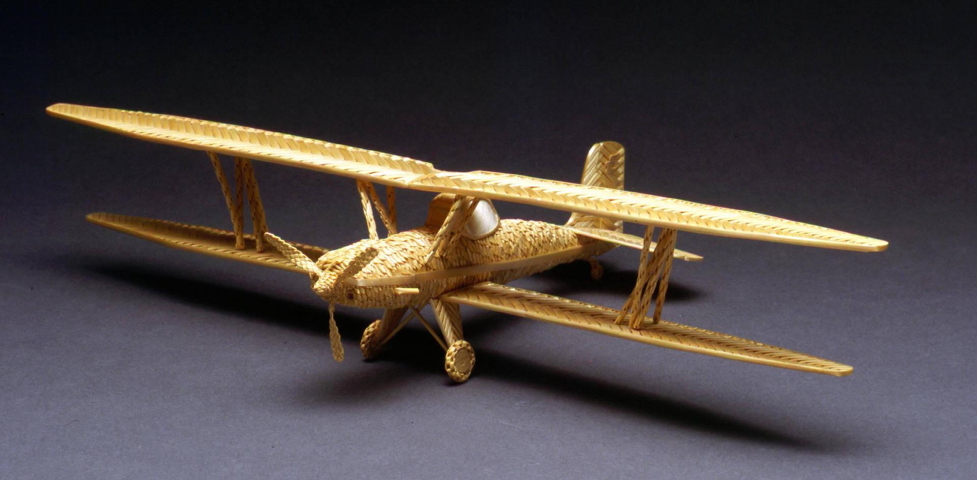 Eagle Bi Plane