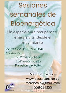 Sesiones de Bioenergética