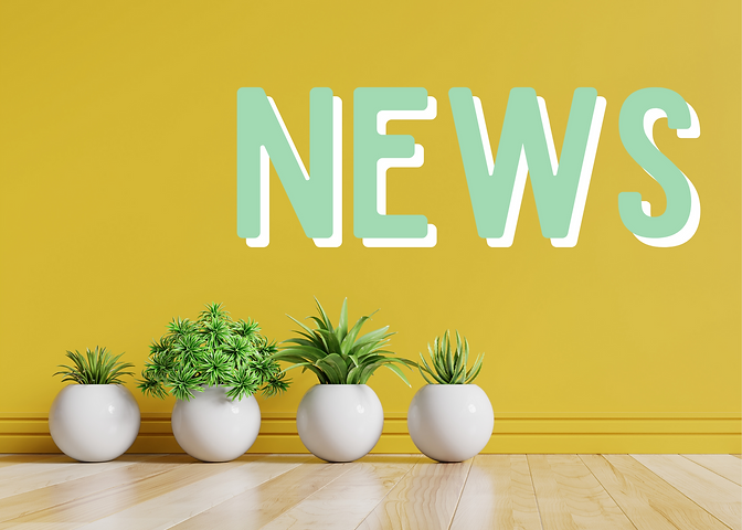 The word news in mint green on a mustard yellow background with house plants in white planters.