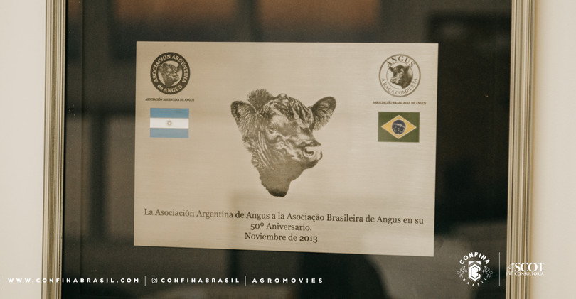 210622_CB_Rota_1_Granja_Vitória_Farroupilha_RS-911.jpg