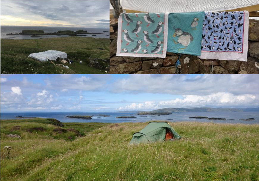 Images clockwise: Our Bothy mansion ©Daniel Plunkett, homely adornments ©Lila Buckingham and a cracking view to wake up to ©Chris Heward.