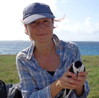 Louise Soanes, 2009-15