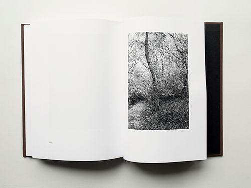 Trees Sect 4-1 x4.jpg
