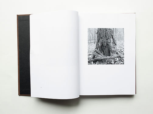 Book Image Base 1 Page Spread x4.jpg