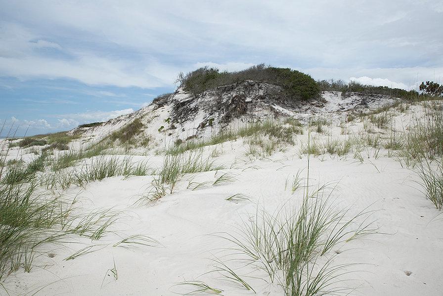 Cape San Blas Dune Hill 96 1094.jpg