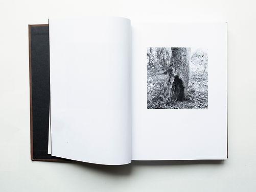 Book Image Base Page 3 Spread x4.jpg