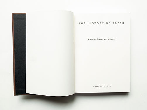 Book Image Title Page Spread x4.jpg